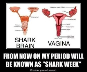 brains, girls, and period image