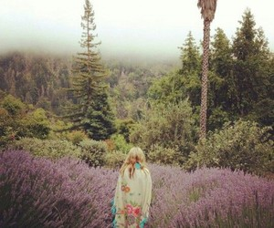 vintage, nature, and hipster image