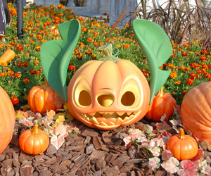 Halloween, pumpkin, and disney image