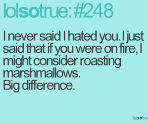 funny, lol, and quotes image