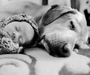 dog, baby, and black and white image