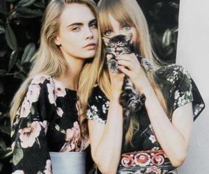 model, cara delevingne, and cat image