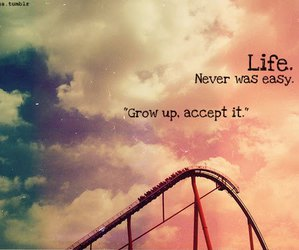 life, quote, and rollercoaster image