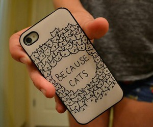 cats, iphone, and cute image
