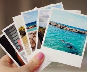 photo, picture, and summer image