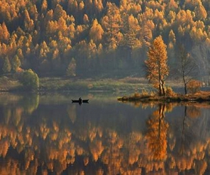 autumn, nature, and boat image