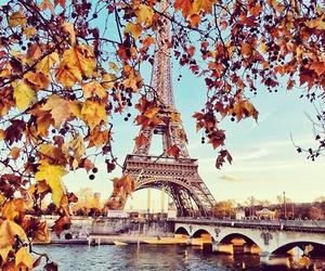 autumn, paris, and fall image