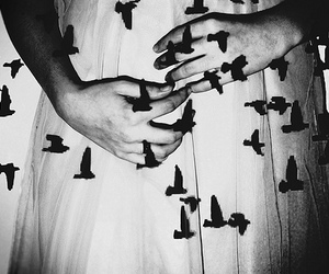 bird, hands, and black and white image