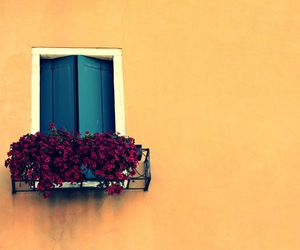 balcony, flowers, and house image
