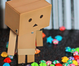 danbo, photography, and cute image