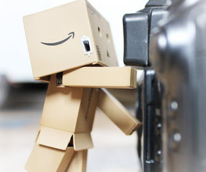 danbo and photography image