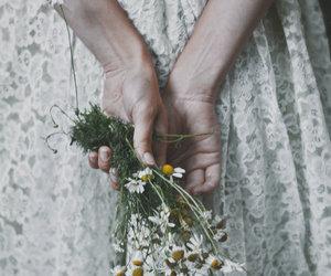 Image by Meryem Liva