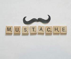 mustache and photography image