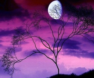 moon, purple, and nature image