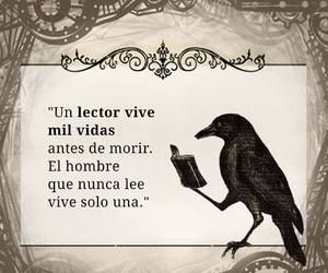 frases, hombres, and lector image