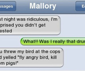 funny and angry birds image