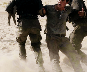 thomas, dylan o'brien, and the maze runner image