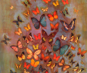 butterfly, art, and colorful image