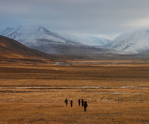 arctic, endless, and fall image