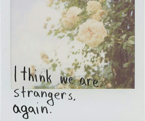 flowers, strangers, and again image