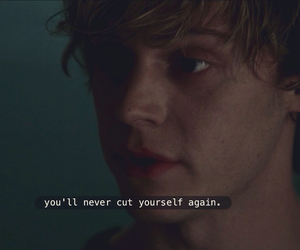 american horror story, cut, and tate image