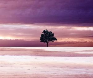 cloud, purple, and tree image
