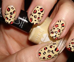 nails, leopard, and nail polish image