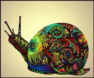 psychedelic and snail image