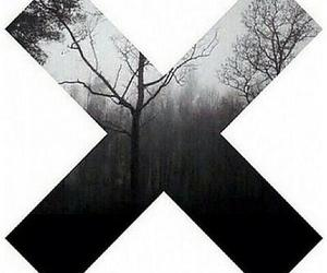 forest, grunge, and the xx image
