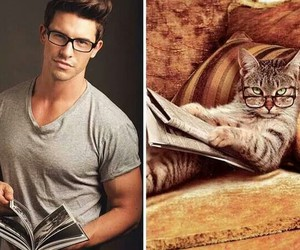 cat, boy, and sexy image