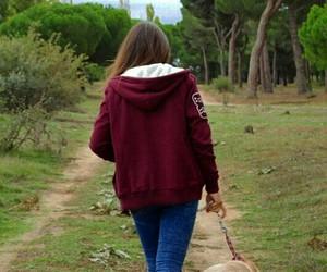 camino, paseo, and perrin image