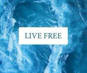free, live, and blue image