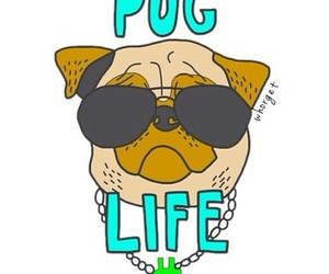 overlay, pug, and dog image