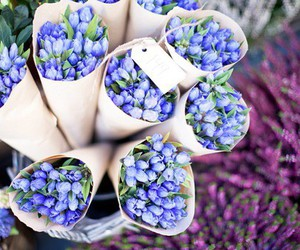 flowers, blue, and pretty image