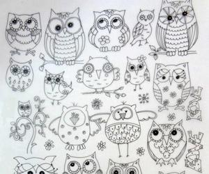 colouring, owls, and doodles image