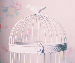 birdcage, vintage, and cage image