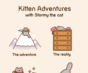 cat, stormy, and pusheen image