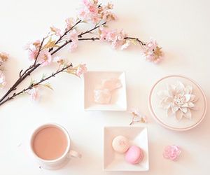 pink, food, and flowers image