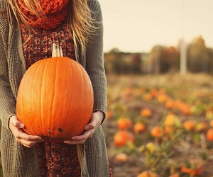 fall, pumpkin, and autumn image