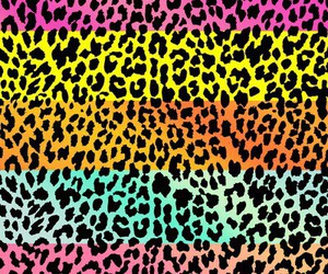 wallpaper animal print image