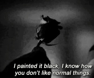 black, rose, and american horror story image