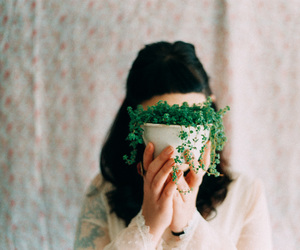 vintage, plants, and hipster image