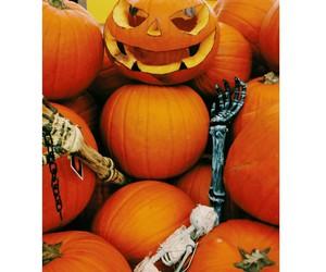 hallowen, followme, and instagram image