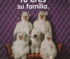 amor, family, and funny image
