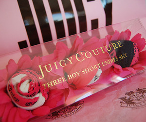 juicy couture and pink image
