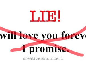 lie, quote, and text image