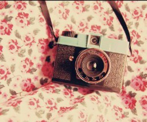 photo, pink, and vintage image