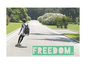 freedom, skate, and crookids image