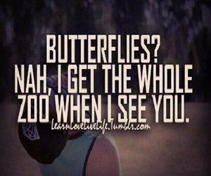 butterflies and love image