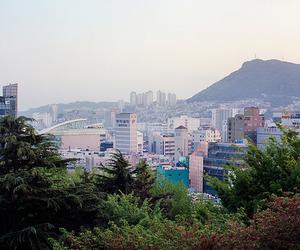 korea, travel, and busan image